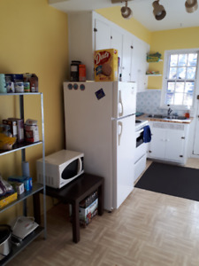 Bright, spacious, furnished 3.5 in NDG for sublet Oct-Jan