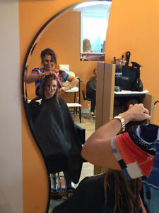 Hair and beauty Salon with 30 years experience Kitchener / Waterloo Kitchener Area image 6