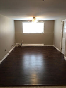 newly renovated, above ground,2 room apartment w/ walk-in closet