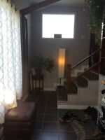 4 beds 2 baths house with large yard