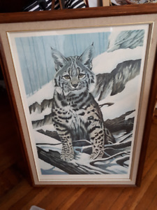 R' Ferguson signed and numbered print Lynx