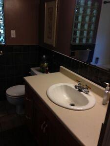 Tillsonburg Room rental in quiet subdivision London Ontario image 3