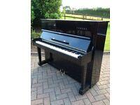 Yamaha U1 black upright piano   Belfast pianos 