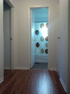 Beautifully updated 3 bedroom HOUSE for rent in Sarnia Sarnia Sarnia Area image 8