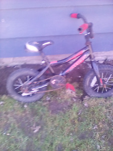 raleigh kids bike