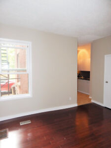 SPACIOUS 1 BEDROOM APARTMENT - SANDY HILL