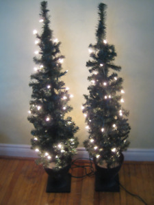 4' NOMA INDOOR/OUTDOOR POTTED TREE SET