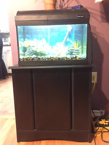 10 gal fish aquarium and stand with complete freshwater setup