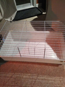 Brand new cage, didn't end up needing it