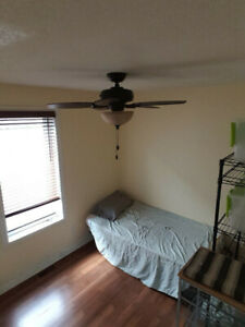 $650/mo room Kensington / Cannon st - University Students Only
