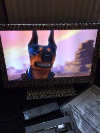 "22""full HD 1080p leopard digital LED TV w it's DVD player."