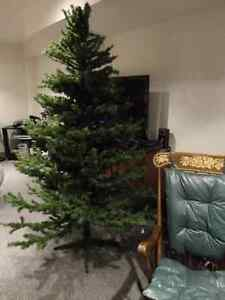 "Quality BARCANA ""Country Classic"" 7 Foot Christmas Tree Now $60"