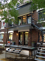 Completely renovated - 1st floor - on park - January 2016