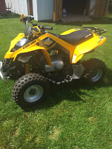 2010 Can am DS 250