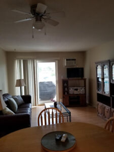 SPACIOUS, CLEAN ONE BEDROOM CONDO FULLY FURNISHED