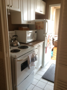 Gorgeous,Bright,Large Room For Rent! Short or Long Term Mid Aug