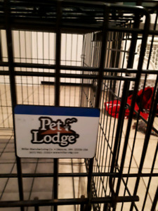 Dog supply Kit (Crate, bowls, & collar) for $100 or Best offer