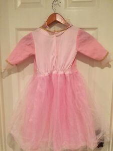 Cute princess gown  for dress up or Halloween  Kitchener / Waterloo Kitchener Area image 3