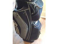 Ping golf cart bag