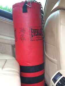 Mint Condition - Everlast Punching Bag