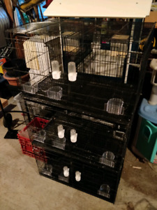 Bird cages 3 of the same size