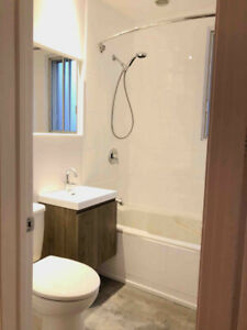 5 1/2 of 3 closed BR fully renovated in NDG cote st-luc Layola
