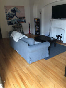 Beautiful 4 1/2 Summer Sublet in McGill Ghetto