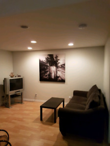 1 bedroom basement suite