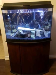 PRICE REDUCED!! 36 gallon bow front full set up!