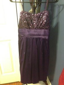 Beautiful ladies purple dress size large