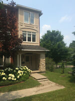Executive Townhouse for Rent - Westboro