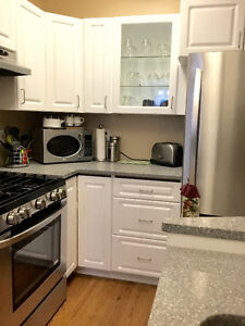 Furnished Private 1 bedroom Suite- Lower Mission Area