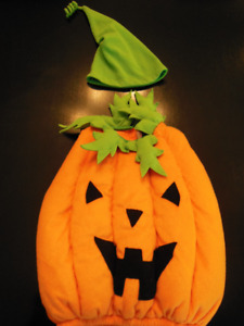 Pumpkin Costume (2T)