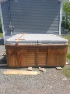 Hydropool 8 person hot tub