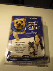 Protective inflatable collar for small dogs.