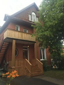Beautiful large one bedroom apartment in the Glebe