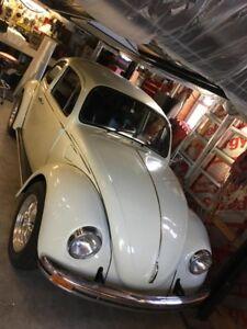 beetle vw volks buggy porsche volkswagen audi