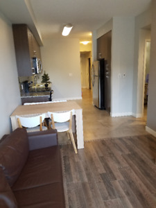 1 Bdrm+Den available for short term from May 1st near Laurier Un