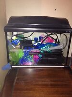 7 gallon fish aquarium - firm price