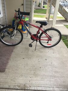 $70 mountain bike