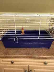 Rodent Cage & Water Bottle