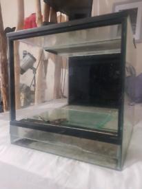 Glass terinium
