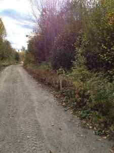 Résidence et/ou chalet, eau, boisé, Saguenay Saguenay-Lac-Saint-Jean image 1