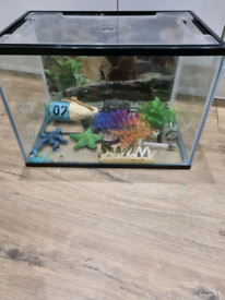 22lt fish tank with accessories