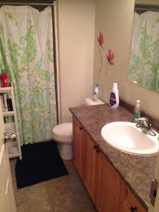 Sublet- Student House Close to UW and WLU Kitchener / Waterloo Kitchener Area image 6