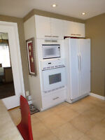Fridge / Wall Mounted Oven / Dishwasher - Great Condition