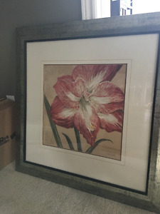 Framed Picture - Lilly