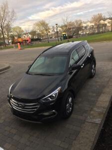 Hyundai santafe 2107