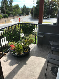 Visiting Victoria in June? Condo for rent month of June only.
