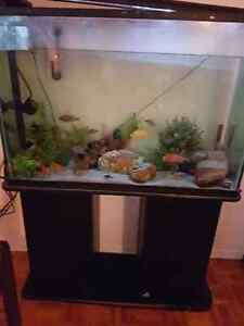 Aquarium 65 gallons kijiji free classifieds in ontario for 65 gallon fish tank
